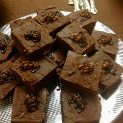 Chocolate Drizzled Brownies