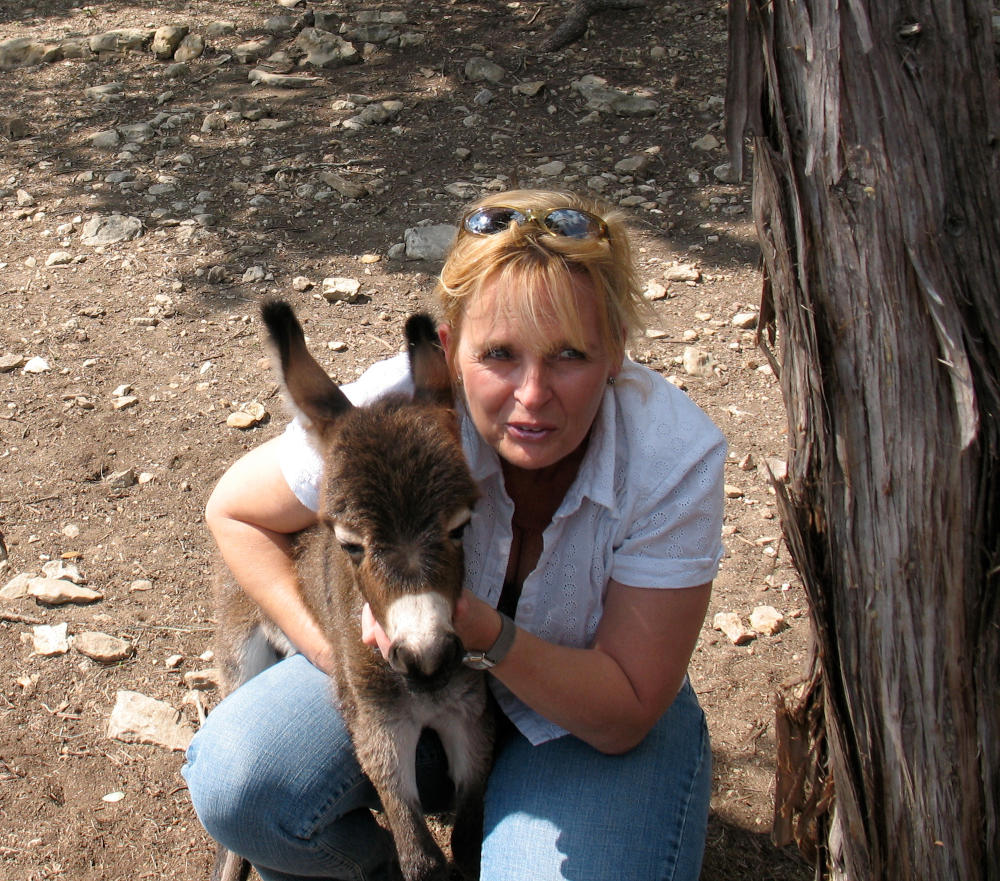 Sibby and baby donkey